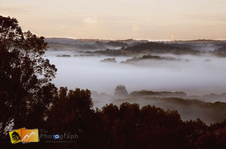 misty morning in NSW