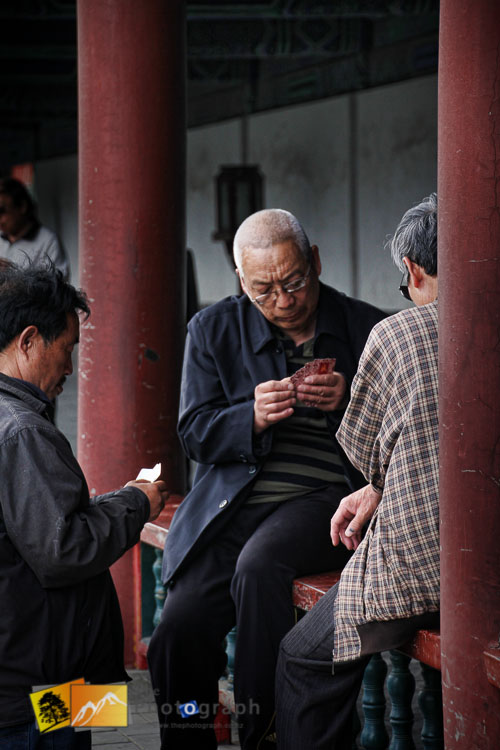 Card players in the park outside the summer palace