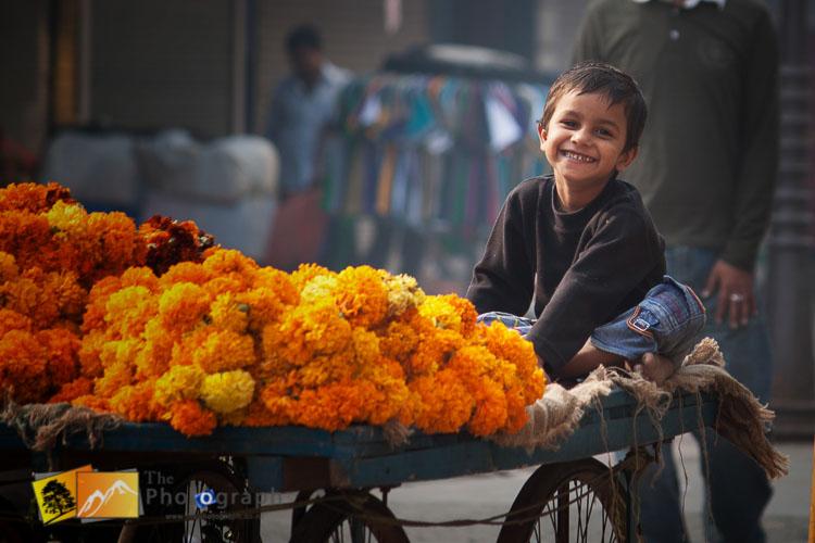 boy rides on barrow in Delhi market