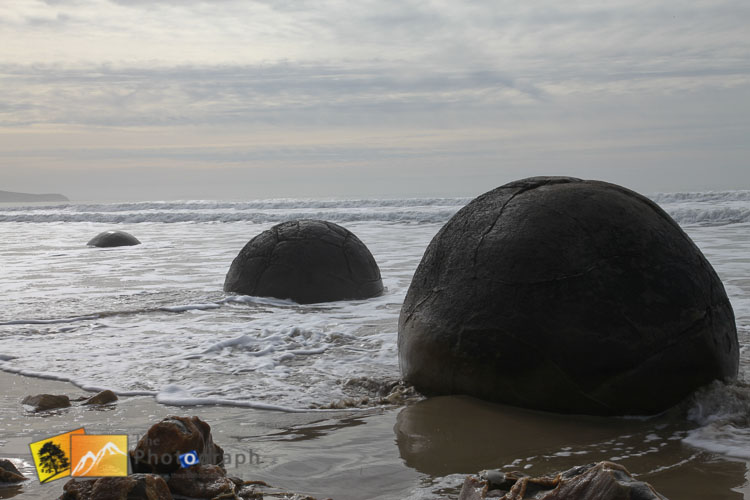 Moeraki Boulders on the south island.