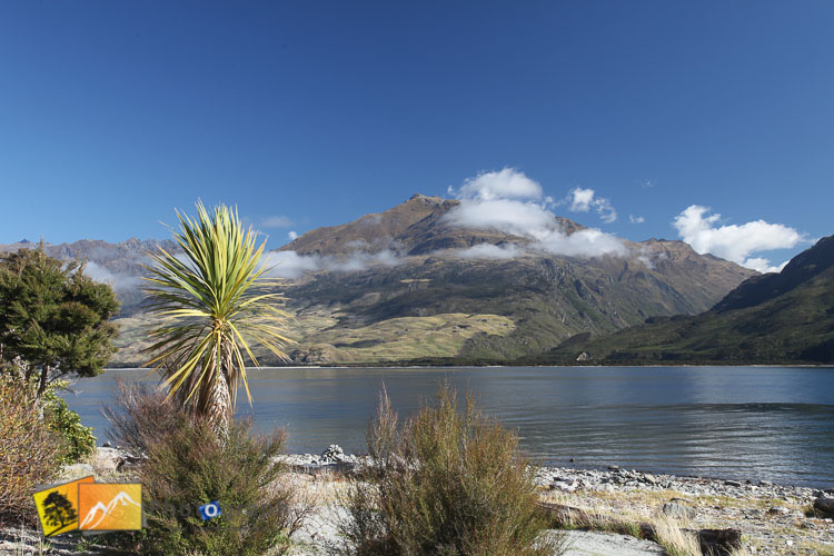 Lake Wanaka view from camp ground.