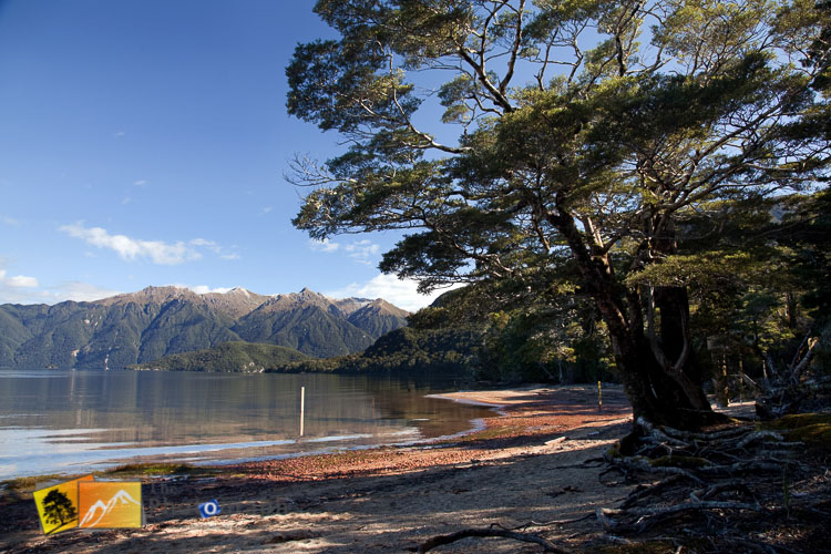 Shore of lake Hauroko.