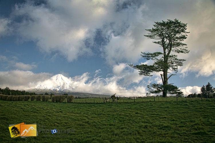 Snow on Mount Egmont.