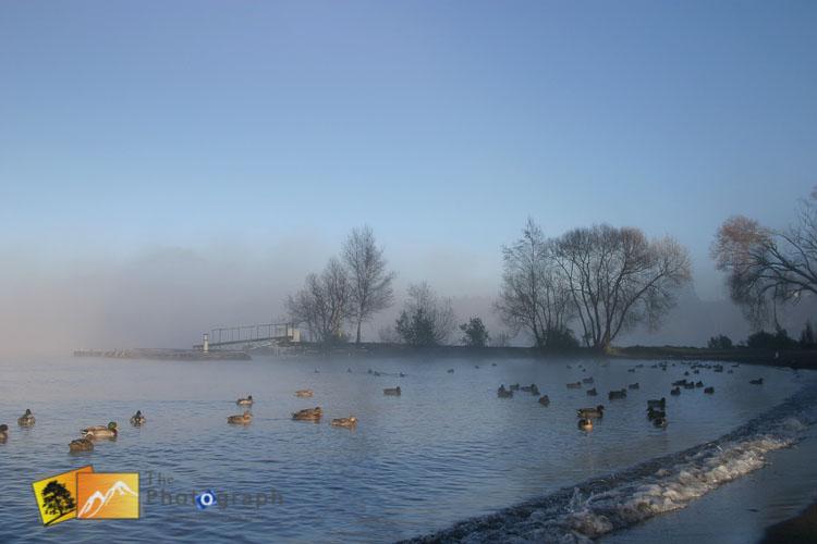 Morning mist on Taupo lake.