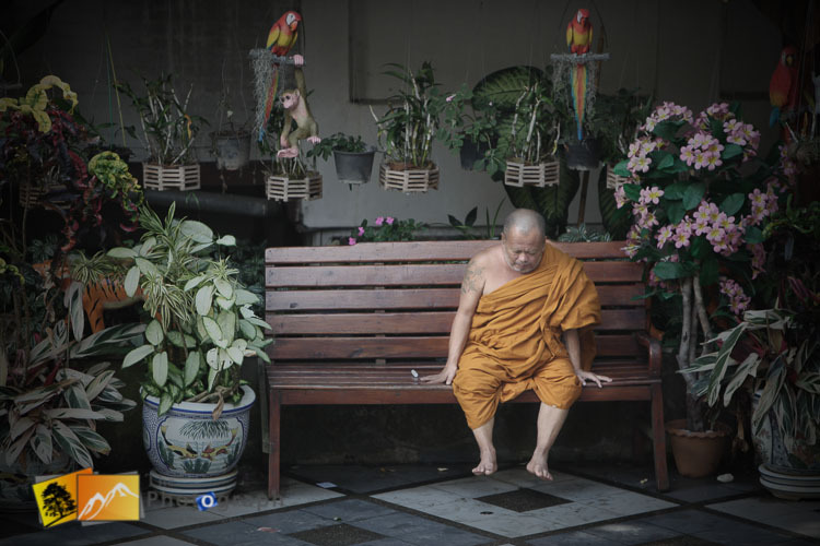 Thailand monk resting on bench in Chang Mai