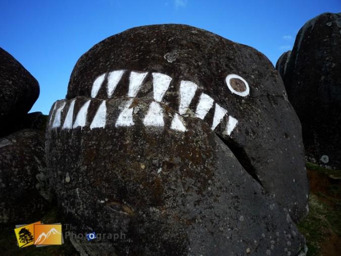 Stony Batter painting, Waiheke island near Auckland.